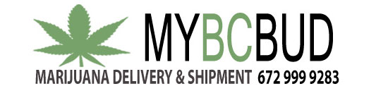 myBCbud.com